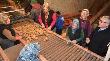 Patates Araştırma Enstitüsü Depomuzu Ziyaret Etti.